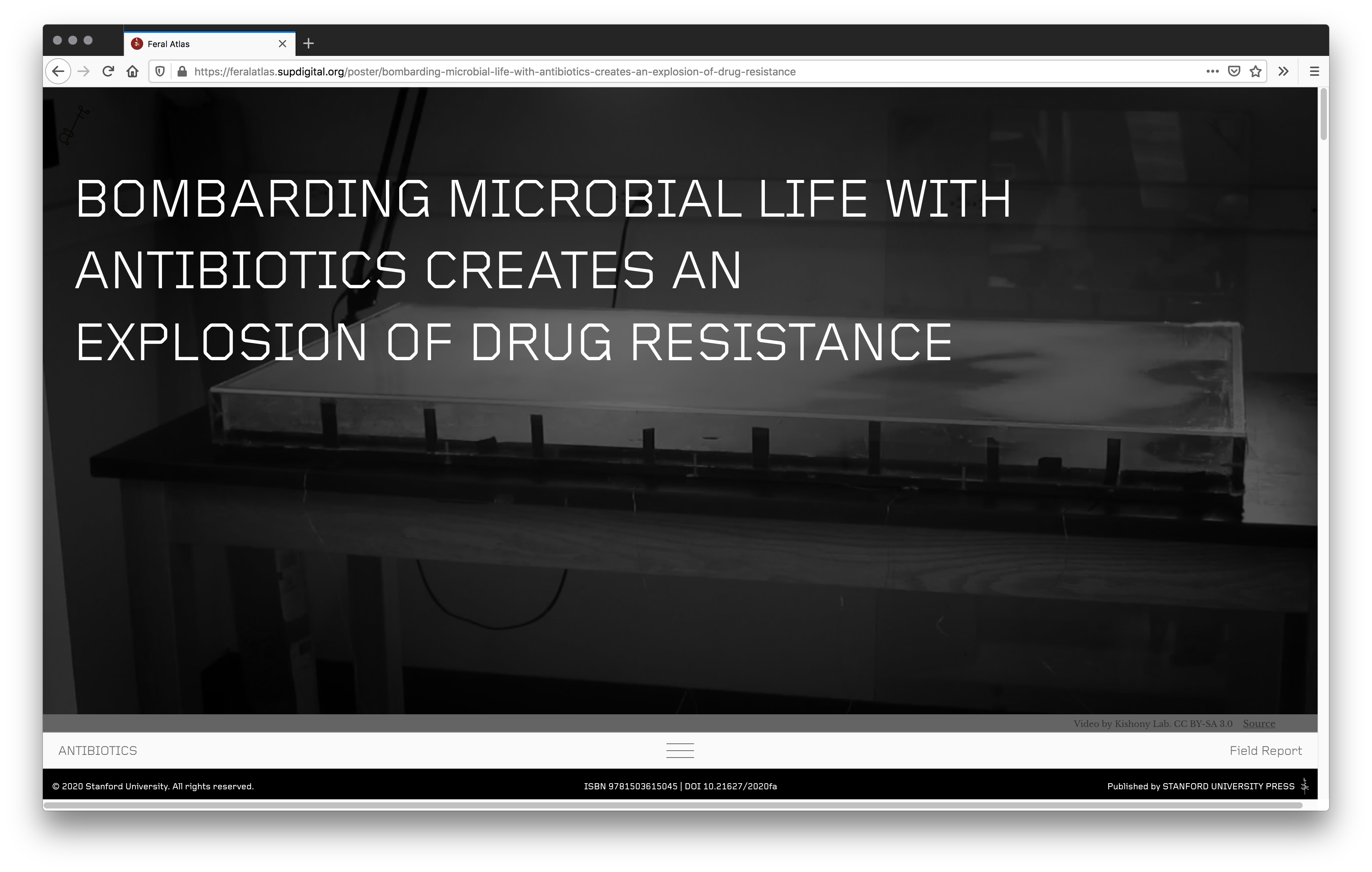 """This screenshot from Feral Atlas' Field Report on antibiotics reads """"BOMBARDING MICROBIAL LIFE WITH ANTIBIOTICS CREATES AN EXPLOSION OF DRUG RESISTANCE""""."""