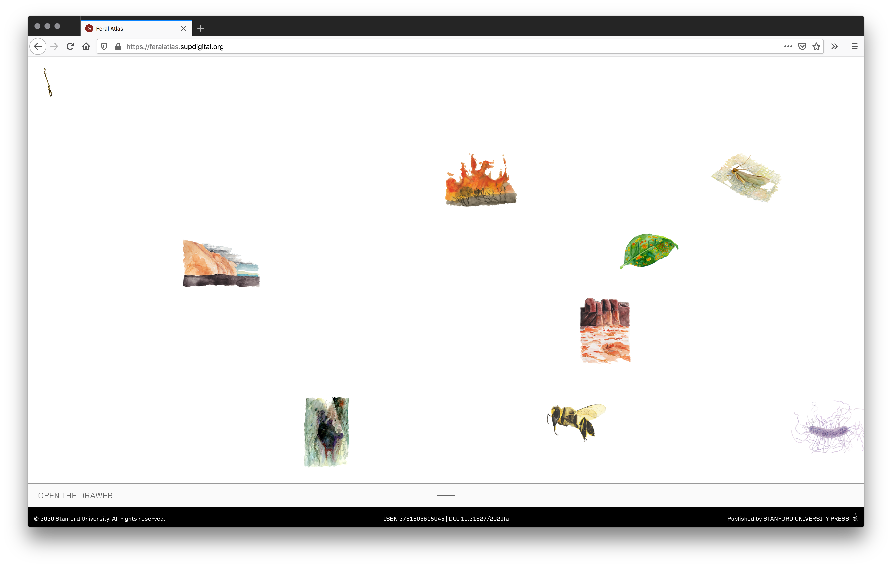 A screenshot of the Feral Atlas homepage shows floating images of wildfires, bees, leaves, and bacteria.